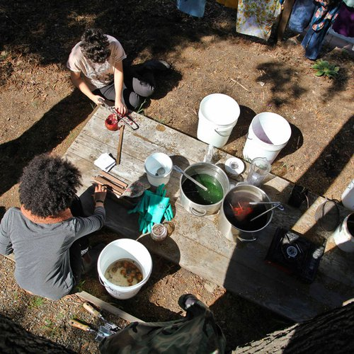 Textile students boil natural plants and herbs to make dyes in the CCA Garden