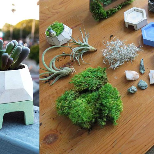 ID-Ceramics_Fabrice-Takeda-planter-2.jpg