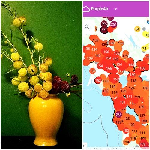 Art shared during a class visit with Mari Rose Taruc of Reclaim Our Power, Ikebana with a crop of Purple Air, 2020. (c) Mari Rose Taruc.