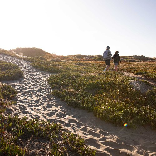 Did we mention the beach? Here's another view of Ocean Beach's windswept sand dunes.