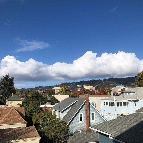 Berkeley, CA, 2:15 pm PT, November 6 2020. By Terri Saul, staff.