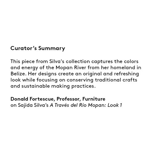 Curator's summary: Sajida Silva